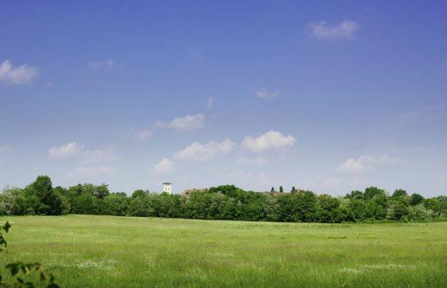 Der Friedrichshof, mitten am Land