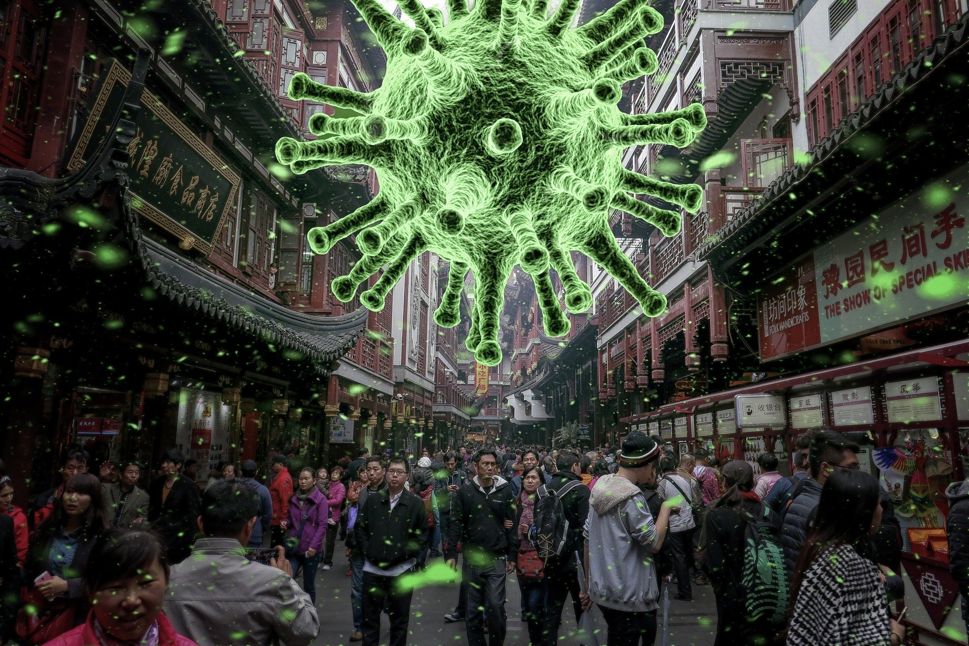 Die alternative Welt anti-kapitalistischer Coronavirus-Experten