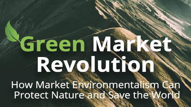Unsere Umwelt braucht ein Umdenken – hin zur Marktwirtschaft